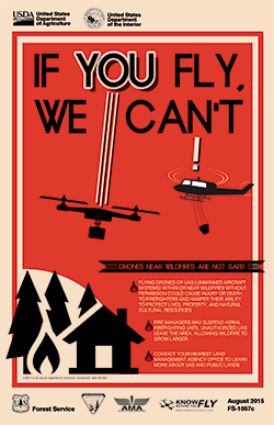 "Poster for ""If You Fly, We Can't"" campaign"