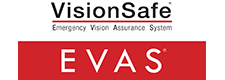 VisionSafe Corporation – 2017