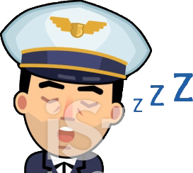 icon of s sleeping pilot